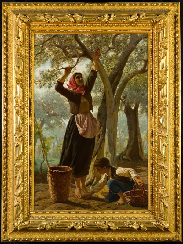 La raccolta delle olive arte for Raccolta olive periodo