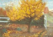 Anna Ancher, Pero antistante al giardino degli Ancher (Pæretræ i Anchers forhave)