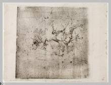 Giuseppe De Nittis, Studio d'albero | Étude d'arbre, seconda metà del XIX secolo, Stampa