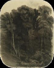 Antonio Fontanesi, Il bosco, Disegno, Collezione privata