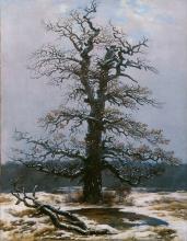 Friedrich, Quercia nella neve.jpg