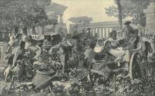 Michele Tedesco, Filelleni della Magna Grecia