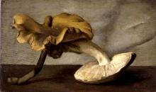 Giuseppe Abbati (attribuito a), Natura morta con funghi