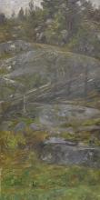 Acke, Interno di foresta a Morotsvik - Ornö   Skogsinteriör från Morotsvik - Ornö   Forest interior from Morotsvik - Ornö