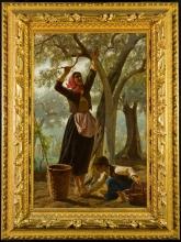 Bechi, La raccolta delle olive [cornice].jpg