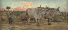 Giovanni Boldini, Buoi nella campagna toscana