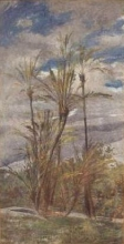 Boldini, Paesaggio con palme e aranci.jpg