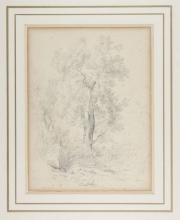 Odoardo Borrani, Studio di albero