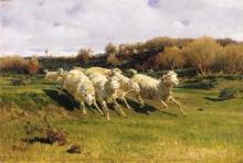 Stefano Bruzzi, Pecore in fuga