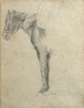 Stefano Bruzzi, Studio di cavallo