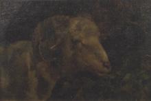Stefano Bruzzi, Testa di caprone