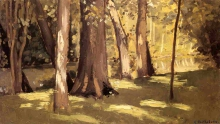 Caillebotte, Lo Yerres, effetto di luce.jpg