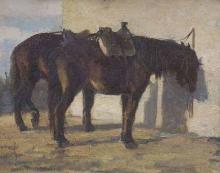 Cecconi, Cavallo [2].jpg