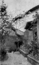 Cecconi, Giardino a Castiglioncello.jpg