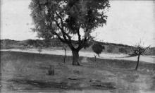 Eugenio Cecconi, Scena maremmana