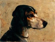 Cecconi, Testa di cane da caccia.jpg