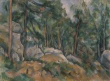Cézanne, Interno di foresta   Intérieur de forêt   Forest interior