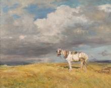 Beppe Ciardi, Cavallo bianco