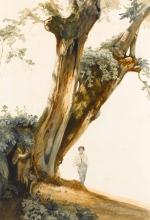 Costa, Studio di albero con ragazzo.jpg