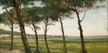 Costa, Un filare di vecchi pini.jpg