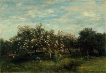 Daubigny, Meli in fiore | Apple blossoms