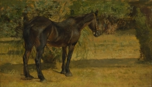 Fattori, Cavallo al sole.jpg