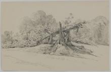 Fontanesi (?), Paesaggio con l'albero spezzato