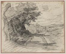 Fontanesi, Alberi e sentiero nella valletta