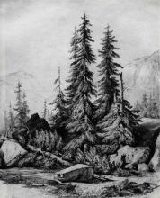 Fontanesi, Gruppo di alberi (Abeti)