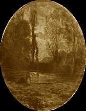 Fontanesi, Stagno lungo il Mugnone