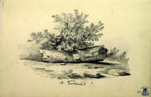 Fontanesi, Studio con mezzo tronco d'albero e cespuglio