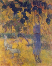 Gauguin, Uomo che coglie frutta da un albero | Homme cueillant fruits d'un arbre | Man picking fruit from a tree