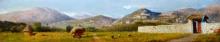 Gelati, Paesaggio toscano.jpg