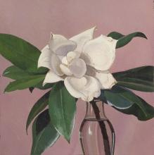 Oscar Ghiglia, La magnolia   The magnolia
