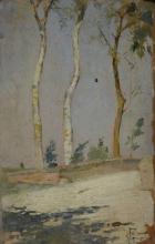 Gioli Francesco, Strada con alberi.jpg