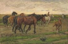 Gioli Luigi, Butteri e cavalli maremmani.jpg