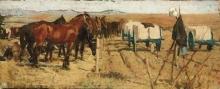 Gioli Luigi, Cavalli nella campagna.jpg