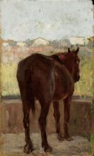 Gioli Luigi, Cavallo [2].png