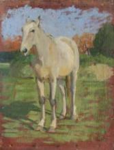 Gioli Luigi, Cavallo [4].png