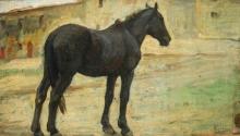 Gioli Luigi, Cavallo nero.jpg