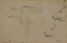 Gioli Luigi, Studio di mucche.jpg