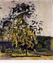 Hodler, Alberi nel giardino dello studio | Bäume im Ateliergarten