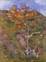 Hodler, Castagno (Giovane castagno in autunno) | Kastanienbäumchen (Junger Kastanienbaum im Herbst)