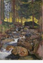 Hodler, Foresta con ruscello di montagna | Wald mit Bergbach