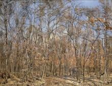 Hodler, Il bosco di faggi.jpg