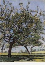 Hodler, Meli | Apfelbäume