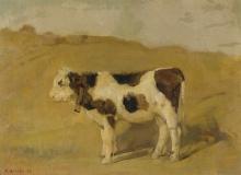 Hodler, Vitello del Simmental al pascolo   Simmentaler Kalb auf der Weide