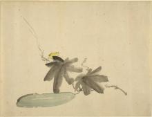 Manet, Cetriolo con foglie.jpg