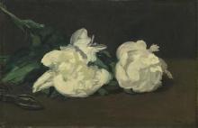 Manet, Ramo di peonie bianche e cesoia.jpg