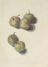 Manet, Studio di cinque prugne.png